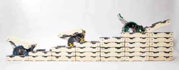As pequenas máquinas em ação: sem receberem dados prévios sobre o projeto, elas agem de maneira praticamente instintiva  (Eliza Grinnell/ Harvard/ Science)