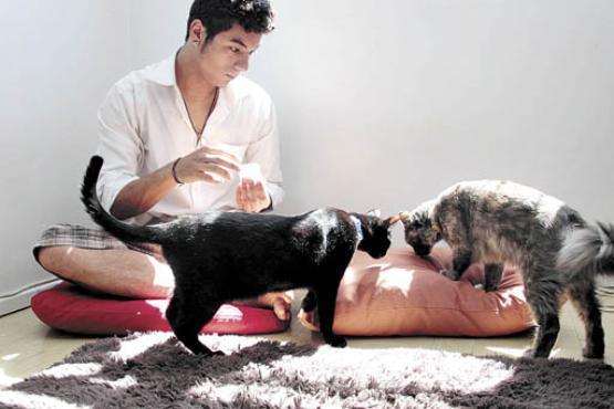 Filipe Marque toma cuidados especiais quando viaja e deixa os dois gatos sozinhos  (Ana Rayssa/CB/D.A Press - 7/2/14)