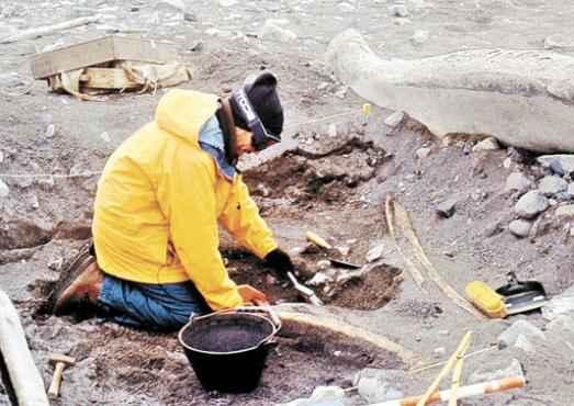 Zarankin em expedição de 2003: 2 mil peças recolhidas (Reuters)