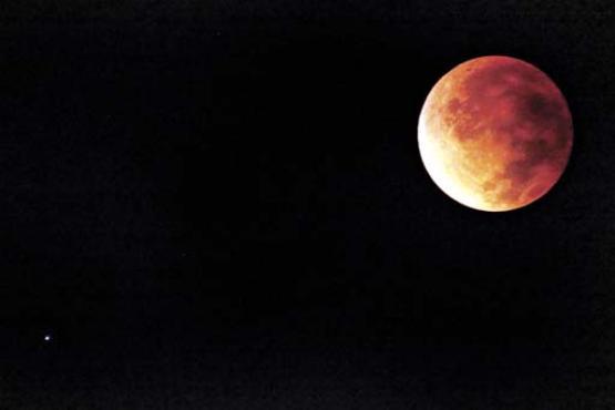 A sequência de imagens mostra a transformação da lua: de cheia e branca, ela quase desapareceu antes de ficar totalmente avermelhada (Carlos Silva/CB/D.A Press)