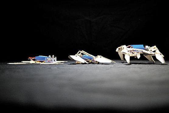O pequeno robô sai do formato plano, no qual é impresso, e ganha a forma tridimensional com o estímulo elétrico aplicado nas ligas com memória de forma (Seth Kroll, Wyss Institute/Divulgação)
