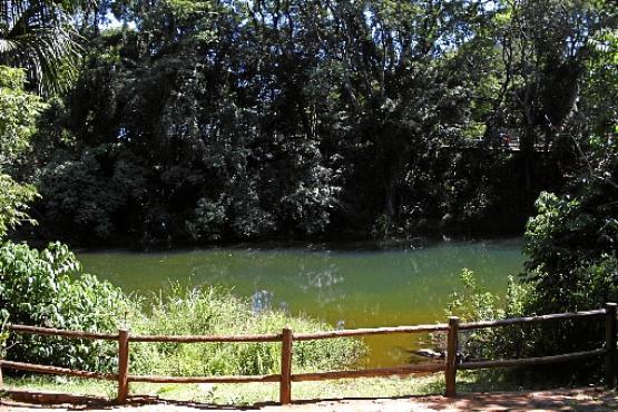 A famosa Lagoa do Sapo chama a atenção de crianças e adultos. Um espaço de contemplação abastecido por diversas nascentes (Ana Rayssa/Esp. CB/D.A Press)