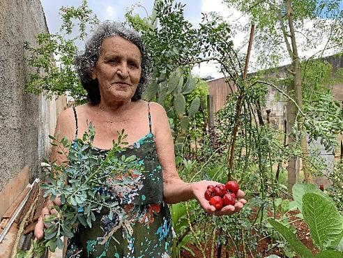 Dona Nilda transformou um ponto de descarte de entulho em plantação de orgânicos (Mariana Machado/Esp. CB/D.A Press - 19/2/19)