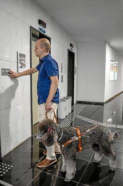 Ricardo tem um cão-guia que o acompanha no trabalho no TST  ( Nicolas Braga/Esp. CB/D.A Press)