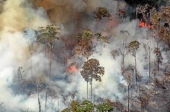 A publicação lembrou que o presidente brasileiro, Jair Bolsonaro,  amenizou os incêndios e os atribuiu a ONGs (Victor Moriyama/AFP - 24/8/19 )