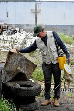 Terreno abandonado no SIA era criadouro do mosquito Aedes aegypti: risco à saúde  (Marcelo Ferreira/CB/D.A Press)