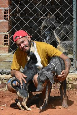 Na chácara onde Jaciel Dias mora, 134 cães aguardam para serem adotados: mais de 40 resgatados só durante a pandemia (Marcelo Ferreira/CB/D.A Press)